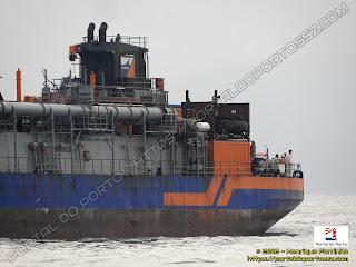 Volvox Atalanta