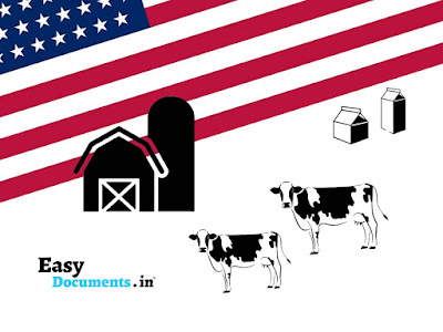 HOW TO START DAIRY FARM BUSINESS