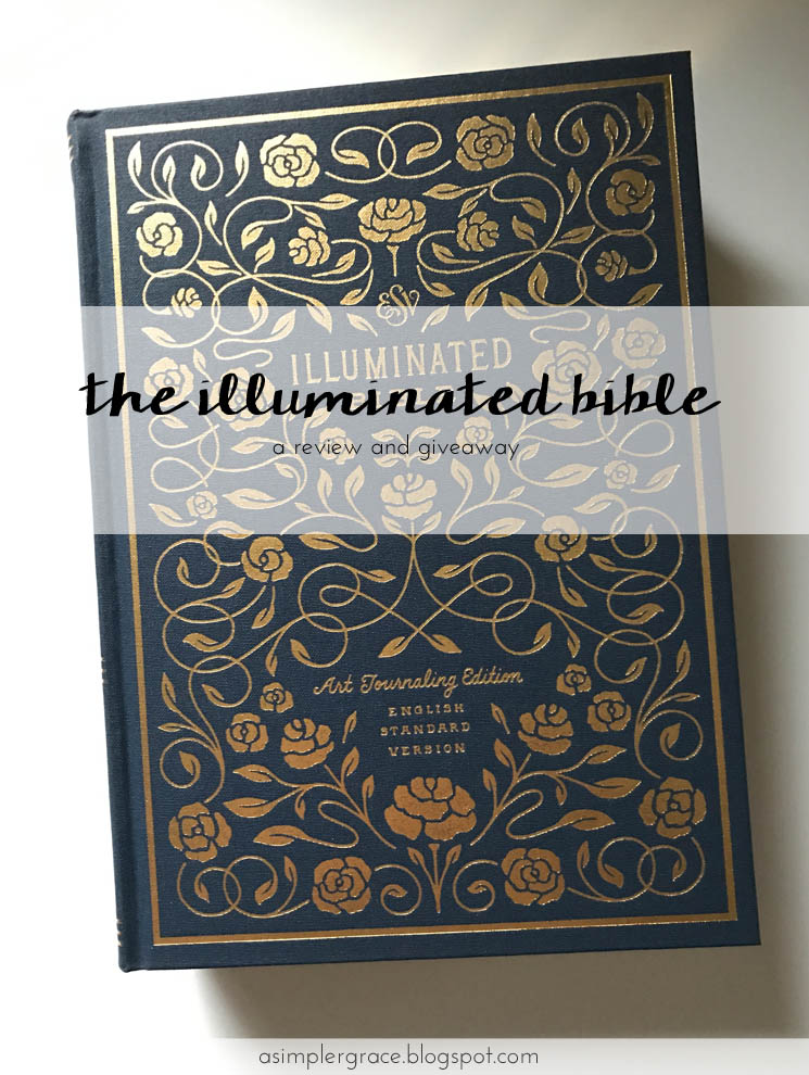 The Illuminated Bible (ESV) - a gorgeous hand-illustrated Bible from artist Dana Tanamachi. Stop by to see more detailed photos and enter to win a copy of your own! #ESVIlluminatedBible #flyby #giveaway #biblejournaling