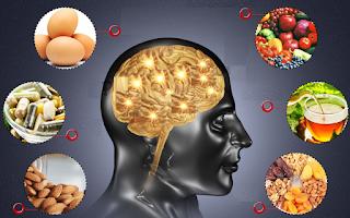 Hafızayı Güçlendiren Önemli Besin Zeka ve Hafıza Geliştirici Yiyecekler Besinler Hafızayı Güçlendiren Bitkiler Zekayı geliştiren ve hafızayı güçlendiren besinler Trend haberleri Makaleler Beyin Gücü Hafıza ve Zekayı Besleyen Yiyecekler Beyni Güçlendiren Besinler Kültür Sanat ve Eğlence Dünyası Hafızaya iyi gelen besinler Medikal