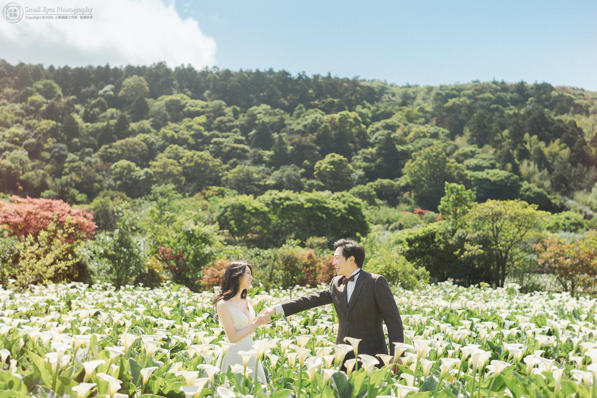 小眼攝影,婚紗攝影,婚攝,吉兒婚紗,新秘瓜瓜,自助婚紗,自主婚紗,台灣,台北,陽明山,竹子湖,海芋季