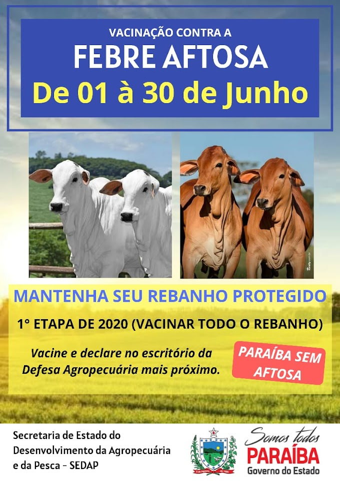 SÃO JOSÉ DOS RAMOS: Secretaria de Agricultura inicia campanha de vacinação contra a febre aftosa.