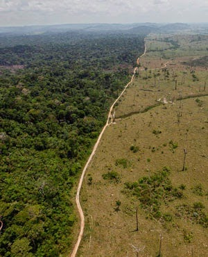A deforested area near Novo Progresso in Brazil's northern state of Para. (Credit: File, AP) Click to Enlarge.