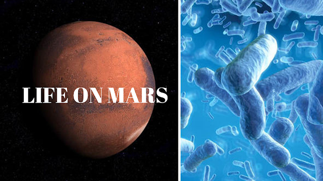 The-Red-Planet's-ancient-frozen-climate-could-have-sustained-microbial-life.