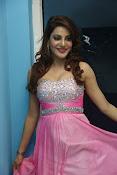 Preeti Soni sizzling photos gallery-thumbnail-10