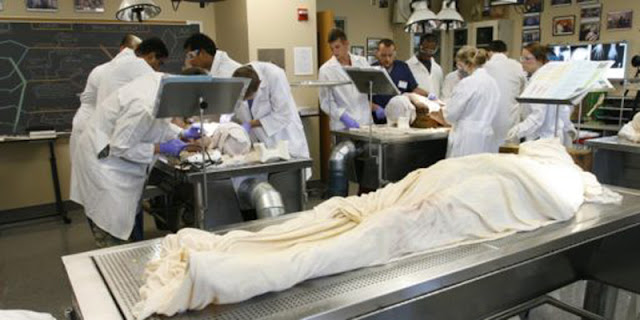 Is It Permissible for a Muslim to Donate His Body for Medical Research After He Dies?