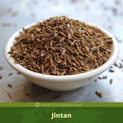 Jintan
