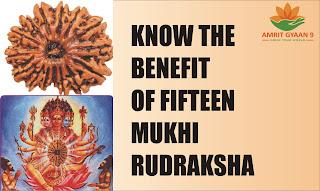 Know the Benefit Of Fifteen Mukhi Rudraksha