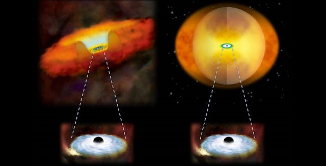 This illustration compares growing supermassive black holes in two different kinds of galaxies. A growing supermassive black hole in a normal galaxy would have a donut-shaped structure of gas and dust around it (left). In a merging galaxy, a sphere of material obscures the black hole (right). Credit: National Astronomical Observatory of Japan