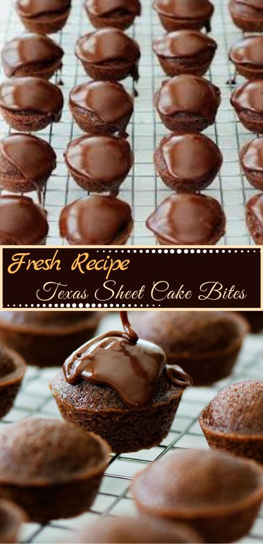 Texas Sheet Cake Bites #desserts #cakerecipe #chocolate #fingerfood #easy