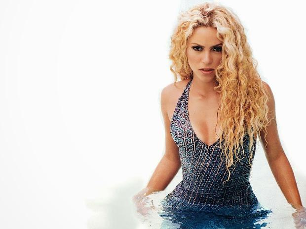 Shakira Beautiful Hd Wallpaper 2014 World
