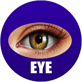 eye in spanish