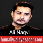 https://www.humaliwalyazadar.com/2018/09/ali-naqvi-nohay-2019.html