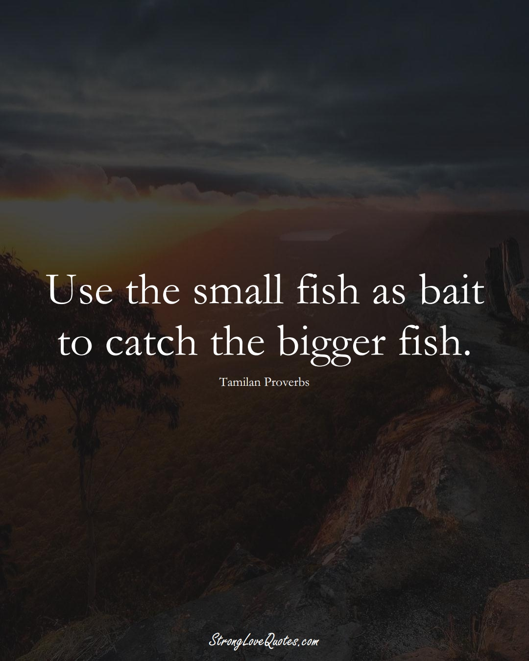 Use the small fish as bait to catch the bigger fish. (Tamilan Sayings);  #aVarietyofCulturesSayings