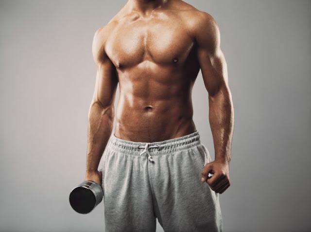 Hipertrofia muscular, proteína