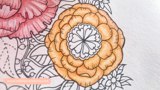 coloring book, teknik mewarnai bunga, mewarnai coloring book, coloring for adult, coloring tutorial, coloring tips, hobi selama pandemi, mindfulness