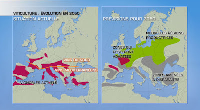 beaux-vin blog actualité vin réchauffement climatique
