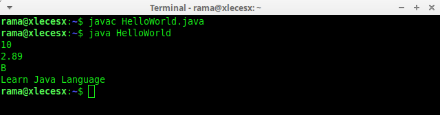 java_variable_example