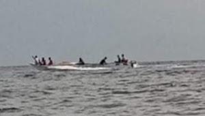 Laporkan Dugaan Kegiatan Illegal Fishing ke Polisi, Kades Bungaia Serahkan Ikan Pogo dan Sunu Sebagai Sample Barang Bukti