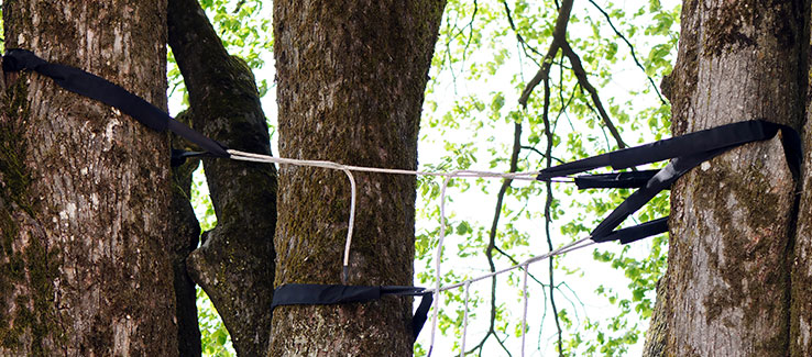 Tree cabling to prevent excess stress and trunk splitting