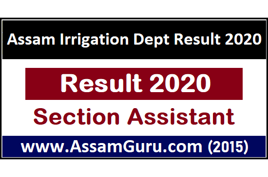 Section Assistant Result 2020