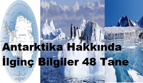 Antarktika Hakkında İlginç Bilgiler 48 Tane