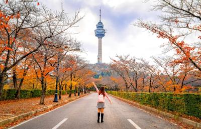 5 Makanan Enak Khas Daegu, Korea Selatan. Pasti Kamu Bakalan Suka dan Nagih!