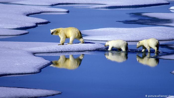 La desaparición mundial del hielo se está acelerando