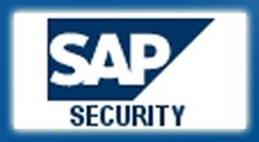 Errores de Seguridad SAP