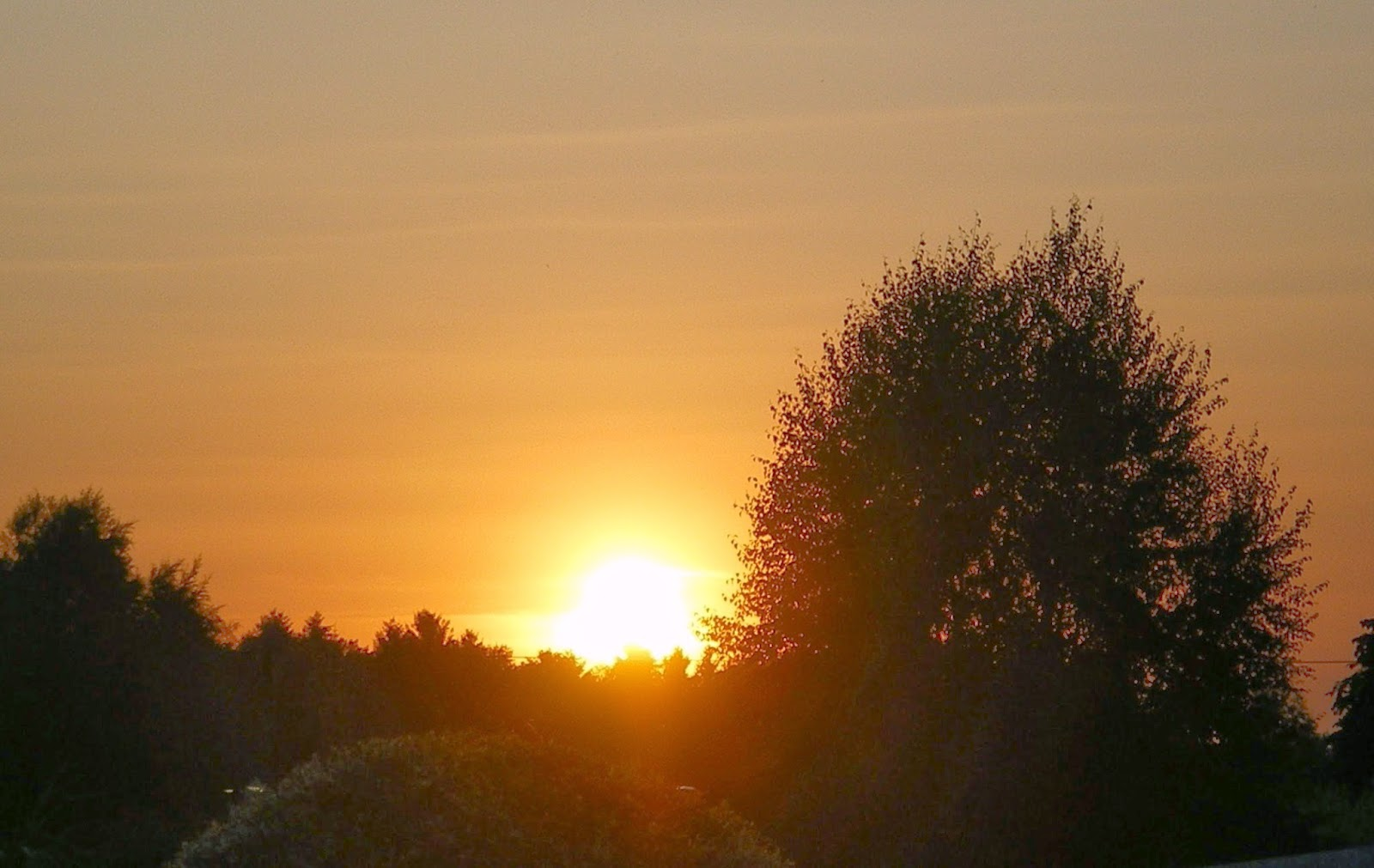 High Spirits Vor Sonnenuntergang Ube Vergebung