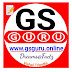 GsGuru About Us