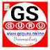 GsGuru About Us