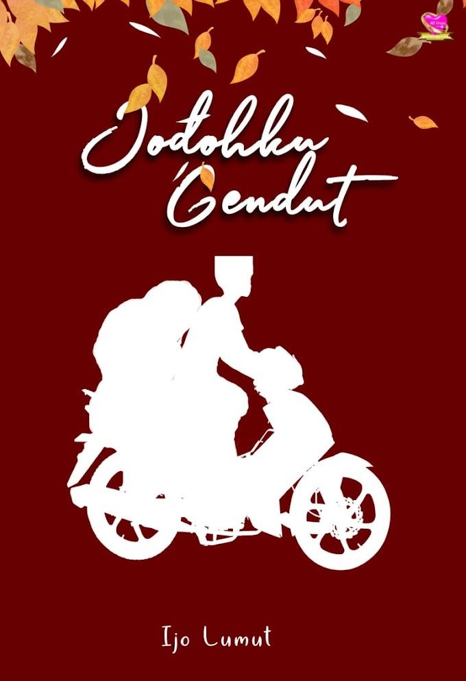 Novel : Jodohku Gendut