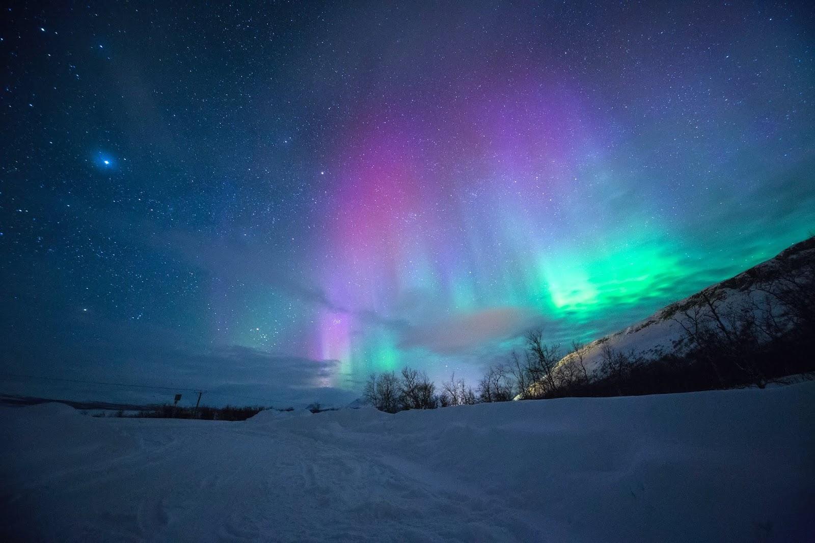 Auroras Fight