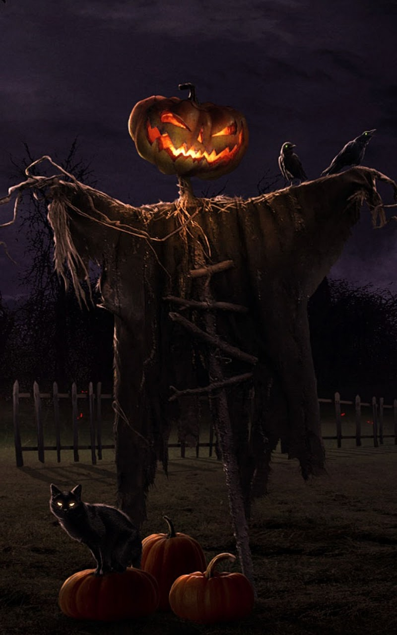 Popular Wallpaper Halloween Galaxy - halloween-scarecrow-galaxy-note-hd-wallpaper  You Should Have_614388.jpg