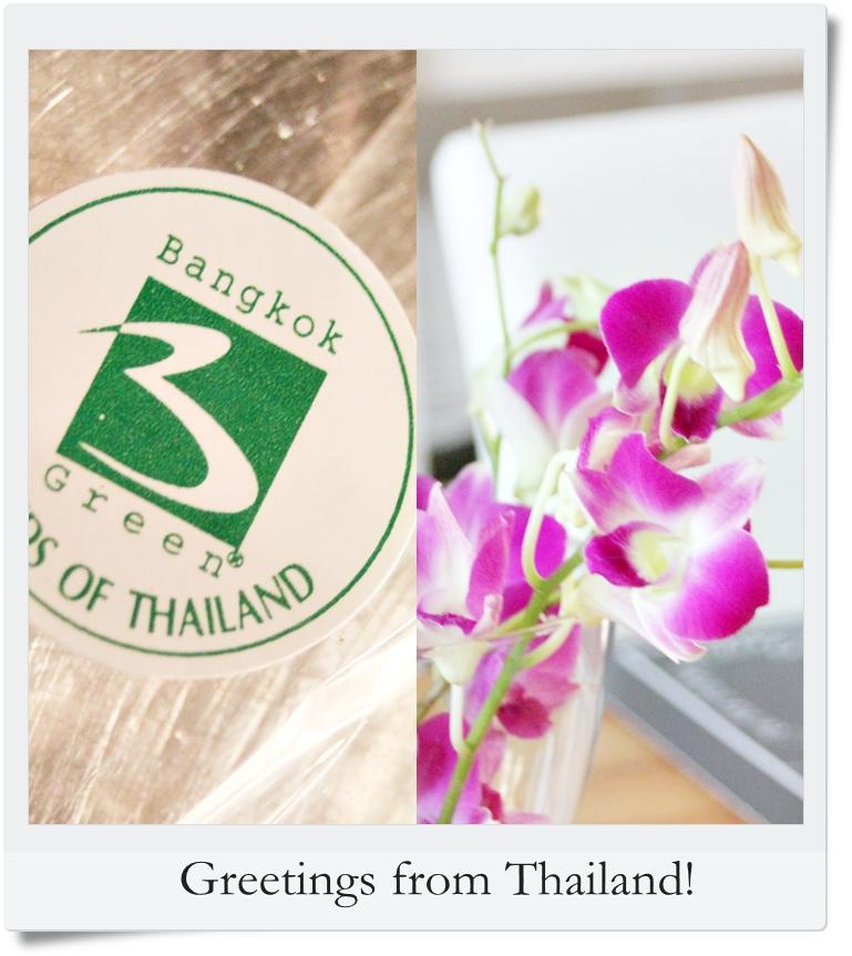 orchide thaimassage gratis dejtingsajt