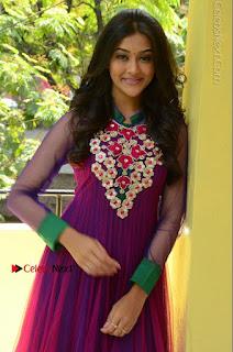 Actress Pooja Jhaveri Latest Stills in Purple Salwar Kameezt at Dwaraka Success Meet  0116.JPG
