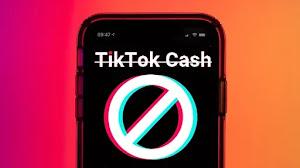 TikTok Cash Resmi Diblokir Pemerintah, Hati-Hati Investasi Bodong