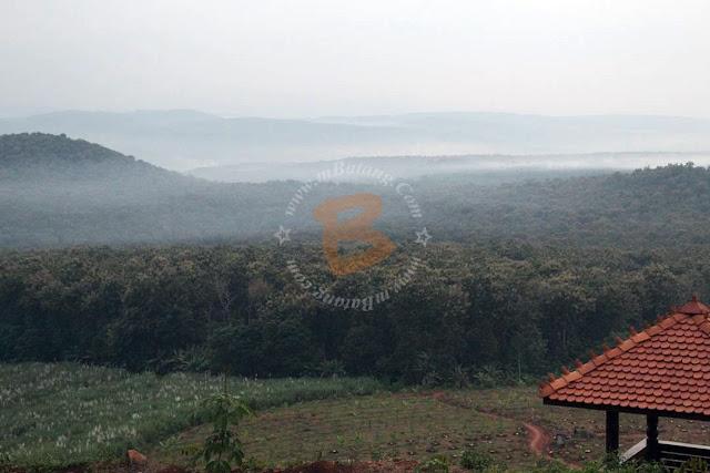 Bukit Srigunung Banyuputih Batang