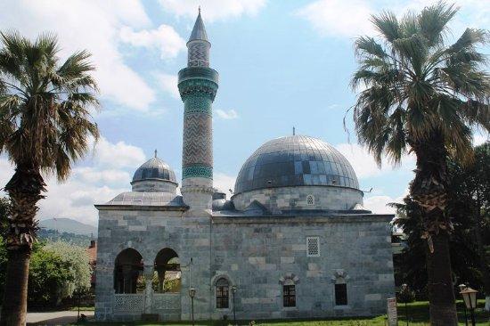 Green Mosquea