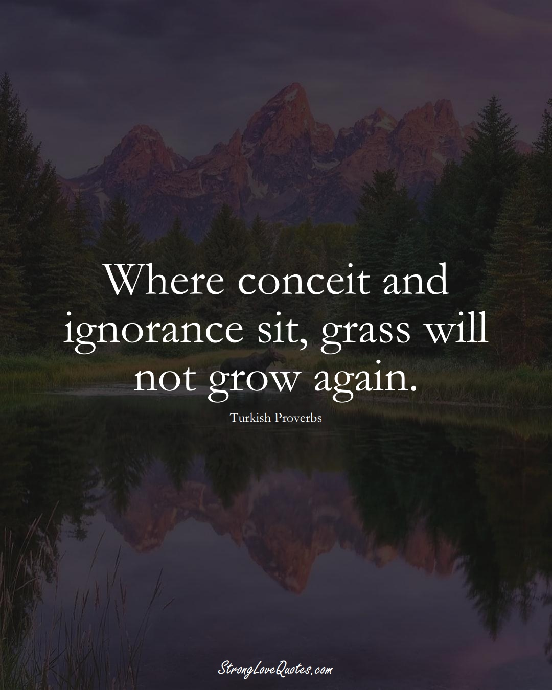 Where conceit and ignorance sit, grass will not grow again. (Turkish Sayings);  #MiddleEasternSayings