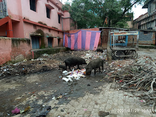 jamshedpur-and-cleaning