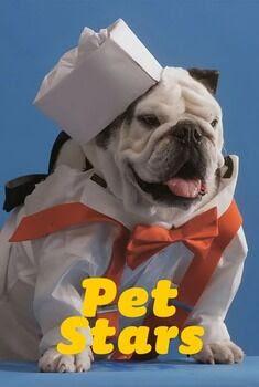 Pet Stars 1ª Temporada Torrent - WEB-DL 1080p Dublado
