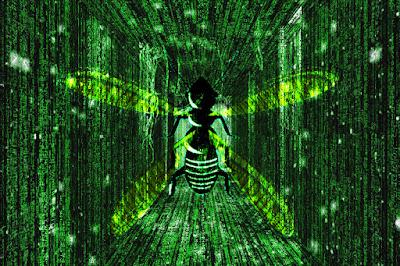 Matrix u termitów
