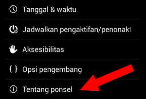 opsi tentang ponsel android