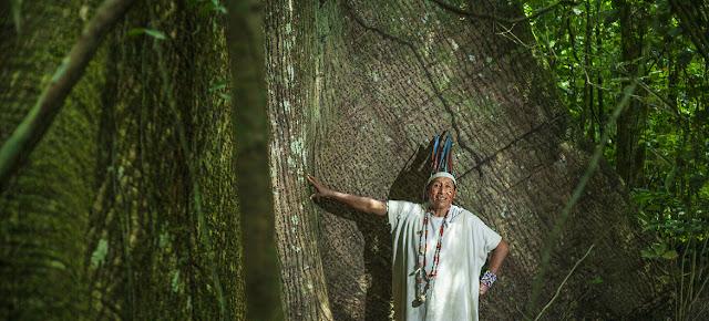 Reserva comunal Amarakaeri, área natural de 402.335 hectáreas protegida por las comunidades harakbuts, yines y machiguengas en Madre de Dios, en la Amazonía de Perú.PNUD Perú