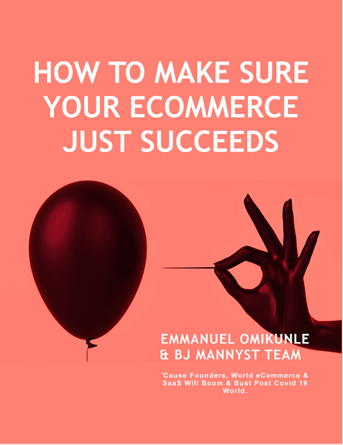 How to make sure your ecommerce just succeeds_book