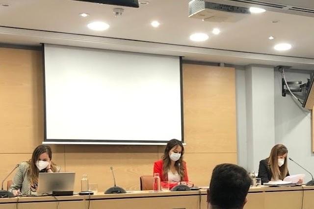 Pleno de la Confederación Española de la Abogacía Joven