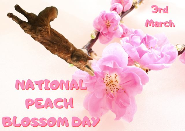National Peach Blossom Day 2021 ©BionicBasil® Diving In With Fudge