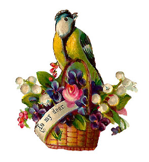 bird flowers basket illustration